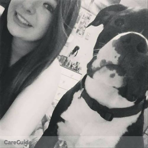 Pet Care Provider Sarii Stpierre's Profile Picture