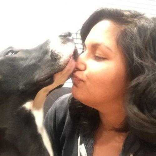 Pet Care Provider Claudia Coldivar Gallery Image 1