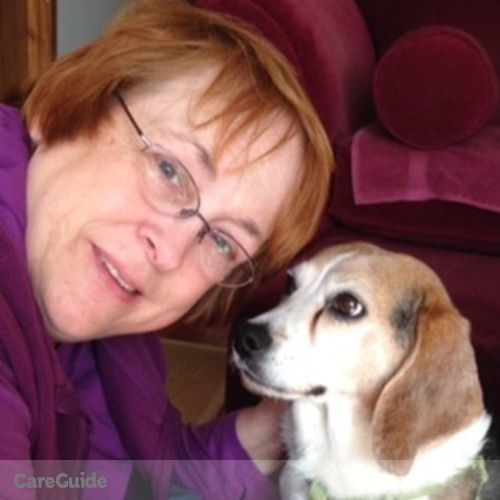 Pet Care Provider DeeDee R's Profile Picture