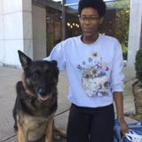 The Bronx Pet Sitter Available For Job Opportunities