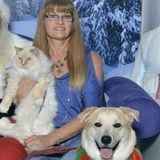 For Hire: Polite Animal Caregiver in Wylie, Texas