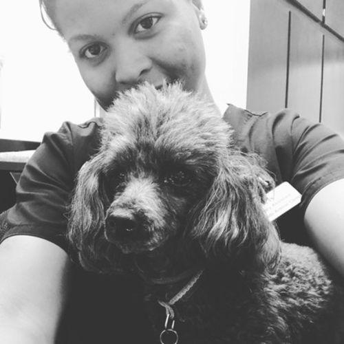 Pet Care Provider Krishonna Lekam's Profile Picture
