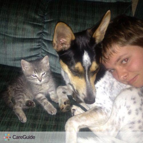 Pet Care Provider Amanda C's Profile Picture