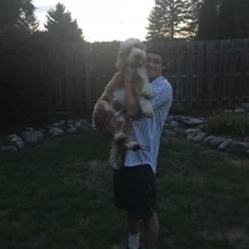 Pet Care Provider Jake M's Profile Picture