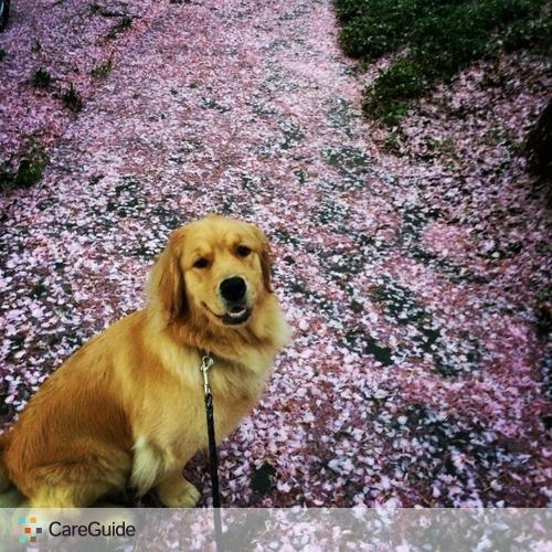 Pet Care Job Hannah Grisham's Profile Picture