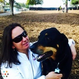 Dog Walker, Pet Sitter in Santa Monica