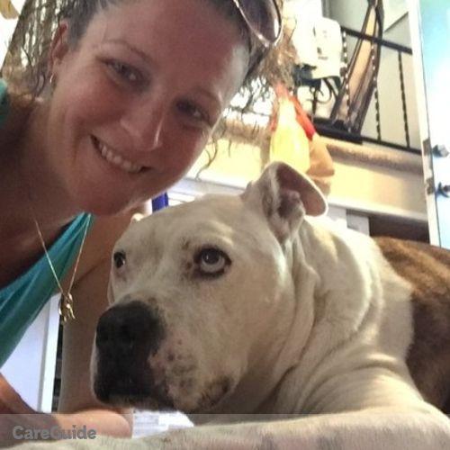 Pet Care Provider Katie Barry's Profile Picture