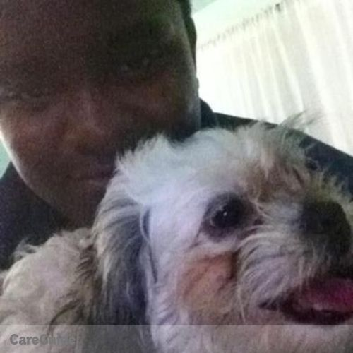Pet Care Provider Kameron Spann's Profile Picture