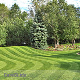 Calgary Lawn Maintenance & Spring Clean Up Specials