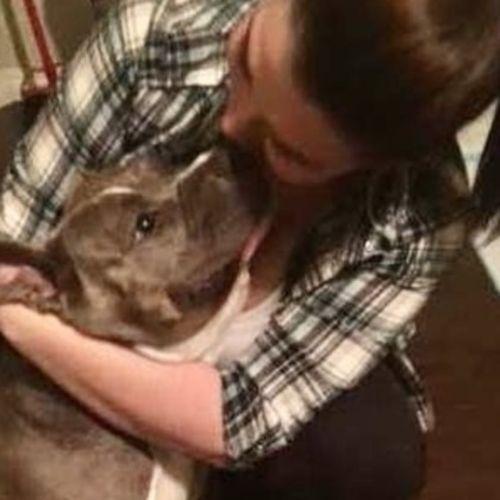 Pet Care Provider Krysta J Gallery Image 2