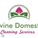 House Cleaning Company in Litchfield Park