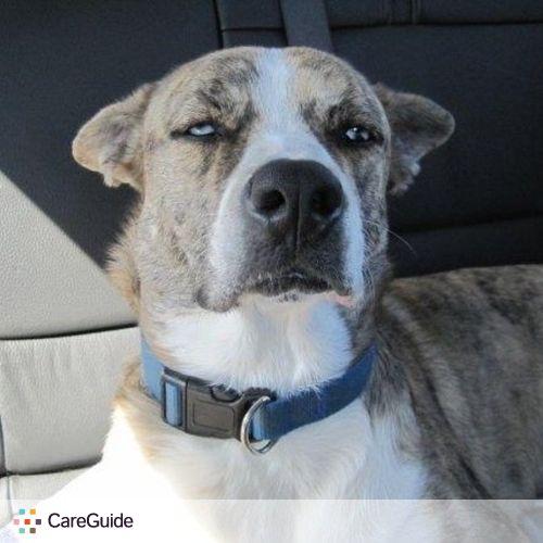 Pet Care Job Cassandra G's Profile Picture