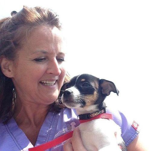 Pet Care Provider Michelle C's Profile Picture