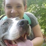 Syracuse Pet Sitter Interviewing For Work