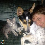 Dog Walker, Pet Sitter in Cape Coral