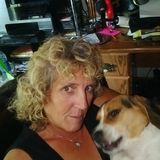 Good House and Plant Sitter Dog caretaker Available Immediately