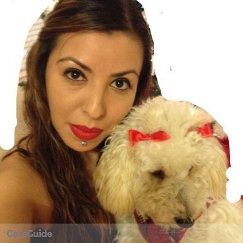 Pet Care Provider Kelly Ramos's Profile Picture