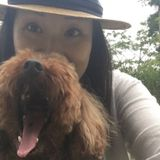 Japanese Dog Lover looking for opportunities walking with your babes!