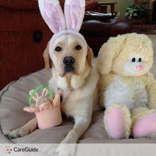 Pet Care Provider Denise Kellenberger's Profile Picture