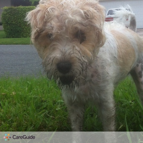 Pet Care Provider Shawn Malinowski's Profile Picture