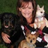 Looking to walk sit, Train, love, groom or snuggle your fur kids! Decades of exp. References avail!