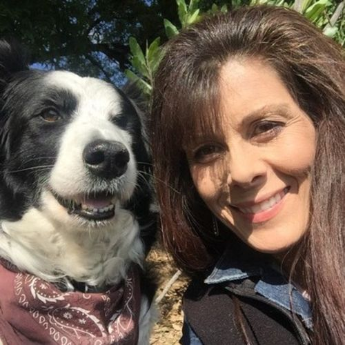 House Sitter Provider Cindy H's Profile Picture
