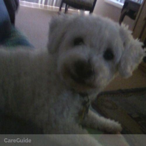 Pet Care Provider Jo-Ann Fandetti's Profile Picture