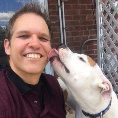 Pet Care Provider Big Yellow Dog Pet Services's Profile Picture