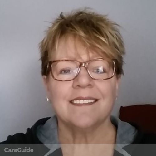 House Sitter Provider Cathi Sullivan's Profile Picture