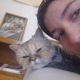 House/Pet sitter in Sonoma county