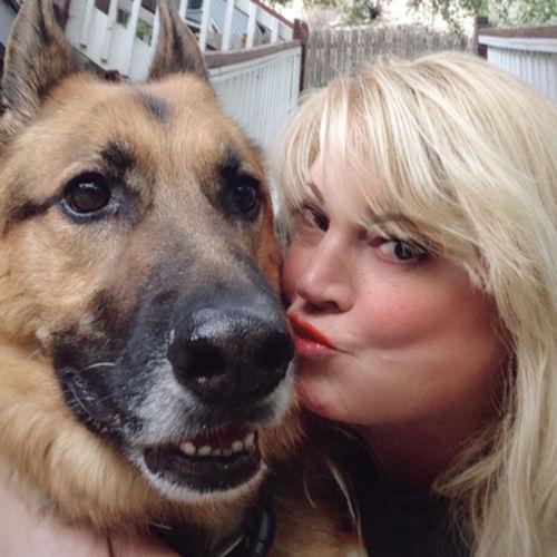 Pet Care Provider Gail C's Profile Picture