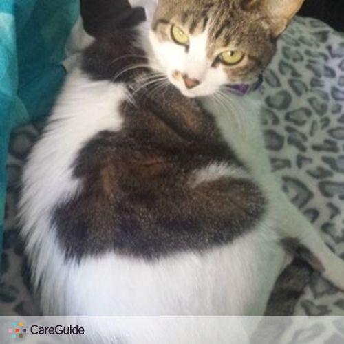 Pet Care Provider Bridgette Gurley's Profile Picture