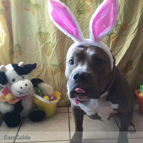 Pet Care Provider Nicole Walling's Profile Picture