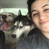 Seeking a Pet Sitter Opportunity in Stafford
