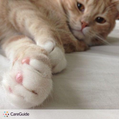 Pet Care Provider Carli L's Profile Picture