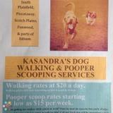 Dog Walker in South Plainfield