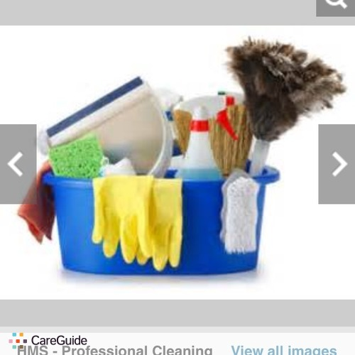 Housekeeper Provider Sparkle Cleaners's Profile Picture