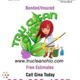 House Cleaning Company, House Sitter in Beachwood