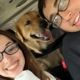 Pet Sitting Offered in Watertown/Fort Drum area