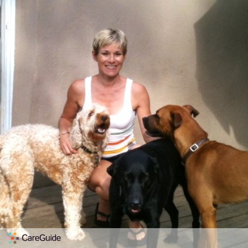 Pet Care Provider Dog Boarding With A Family Family's Profile Picture