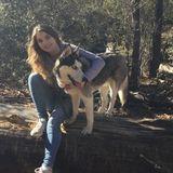 Disciplined Animal Caregiver