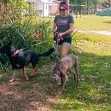 Trusted, Loving and Safe Dog Care Service Provider! Here For You, And Them!