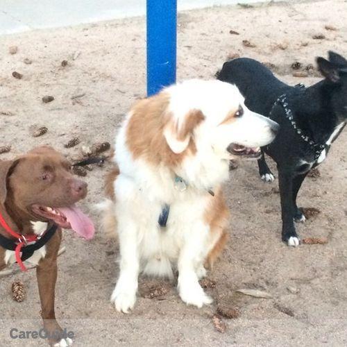 Pet Care Provider Aiyana Maloney's Profile Picture