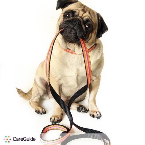 Pet Care Provider Monica Arzate's Profile Picture