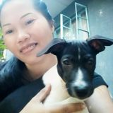 I love pets i love to cares them...i will do my best to cares for them. I am not a pet trainer but i can teach them ..