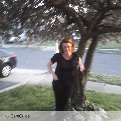House Sitter Provider Jackie Morella's Profile Picture