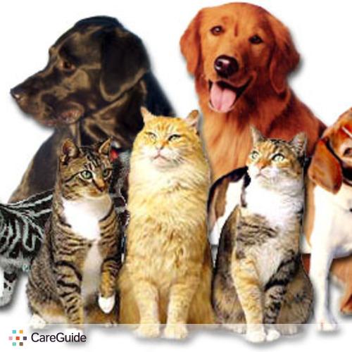 Pet Care Provider Oana M's Profile Picture