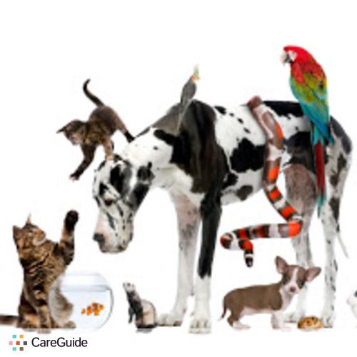 Pet Care Provider Alyssa&Nathan F's Profile Picture