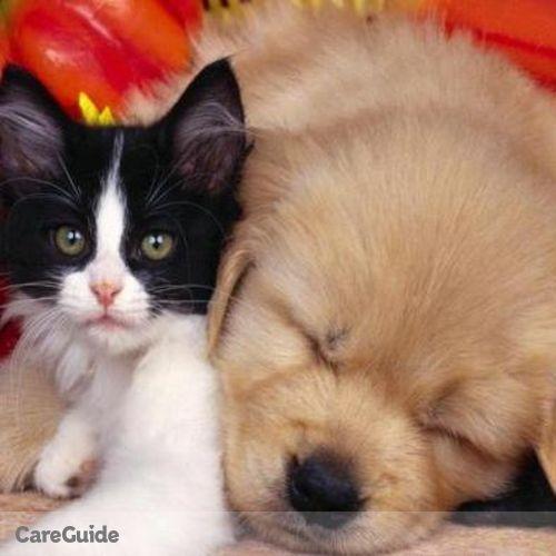 Pet Care Provider Viviam V's Profile Picture