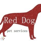 Dog Walker, Pet Sitter in Dartmouth